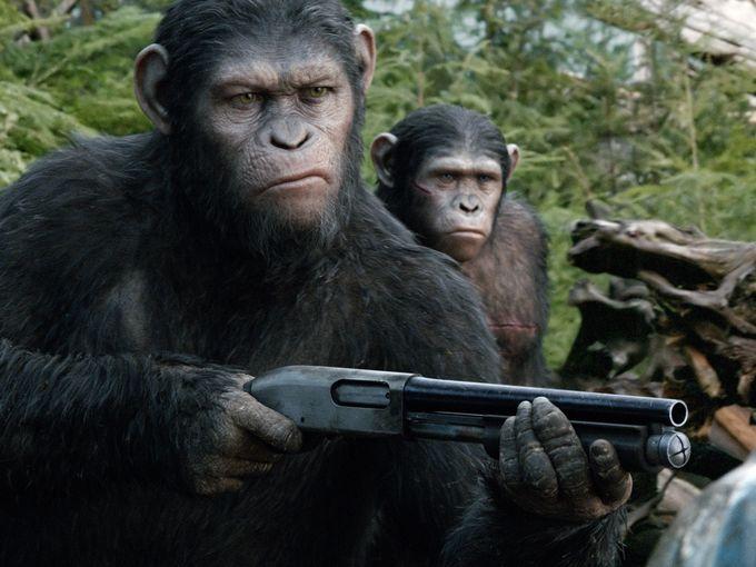 majmokbolygojafolytats11
